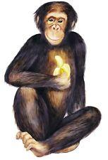 Tatouage Chimpanzee Dry rub Transfer