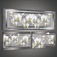 SET (3 teilig) POSTER FOTO BILD LEINWAND BILD ORCHIDEE WEISS BLUMEN  3FX1817S16