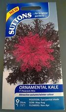 Bargain Suttons seeds Ornamental Kale F1 Peacock mix Red & White  Seed RRP £3.49