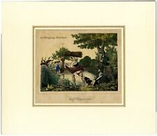 Erotikon, Erotik, Jagd-Abenteuer, kolorierte Lithographie um 1850
