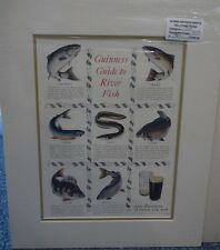 Original Vintage 1953 Advertisement mounted Guinness guide to river fish