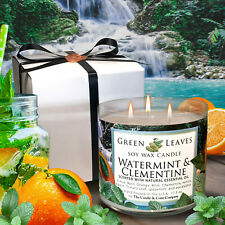 Watermint and Clementine Organic Soy Wax Candle, 17.5oz, Herbal Candle, Gift