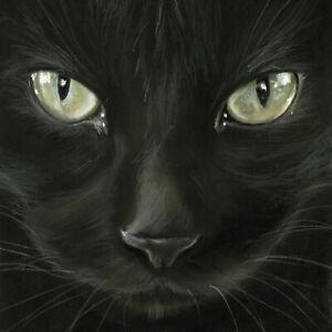20 Servietten, Serviettentechnik Black Cat schwarze Katze ppd, 33x33