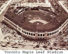 1960's Maple Leaf Stadium IL Toronto Maple Leafs  AAA Baseball  8 X 10 Photo Pic