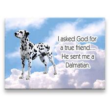 Dalmatian True Friend From God Fridge Magnet New Dog