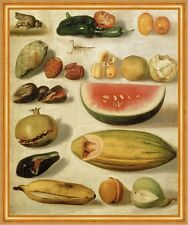 STILL LIFE WITH FRUIT, with Scorpion and frog Bustos frutti RANA B a2 02286