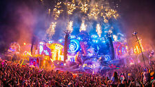 Tomorrowland 2020 - Magnificent Greens Package W2 - Prix à discuter
