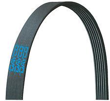Dayco 5100678 Serpentine Belt