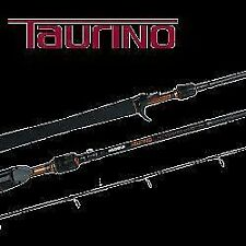 Light Saltwater Fishing Rods