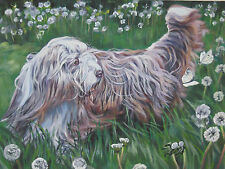 Bearded Collie dog art canvas PRINT of LAShepard Painting beardie 12x16""