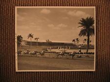 Gulf Stream Park Raceway New York Thoroughbred Horse Race 1950's Original Photo