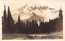 Mount Rainier National Park real photo postcard An Alpine Glade Paradise Valley