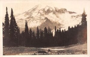 Mount Rainier National Park real photo postcard An Alpine Glade Paradise Valley