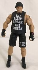 WWE Elite Brock Lesnar 21-1 TRU Break the Streak complete mattel figure ppv