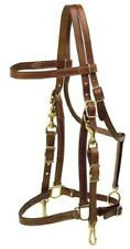 NEW Tory Combination Halter/Bridle