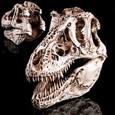 Tyrannosaurus T-Rex Resin Dinosaur Skull Replica Fossil Skeleton Model Ornaments