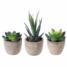 3Pcs Artificial Fake Succulent Plant In Pot Mini Potted Plants Home Garden Decor