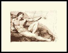 Michelangelo Creation of Amda Poster Bild Kunstdruck & Alurahmen schwarz 28x36cm