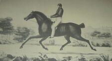 "The Flying ""DUTCHMAN"" Horse & Hiram Woodruff Thoroughbred Racing Currier & Ives"