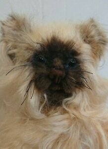 Meadowsweet bears brown & cream jointed cat. 48cm. Lovely face with glass eyes.