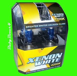 Ford Falcon Fairmont EB EF EL AU XH H1 Xenon White Blue Head light Globes Bulbs