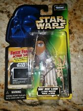 Kenner Star Wars Power of the force Ewoks Wicket and Logray Freeze Frame