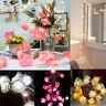 20 LED Fairy String Lights Wedding Garden Rose Flower Party Valentine Decoration