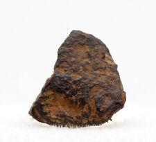 Mundrabilla Iron Meteorite Mineral Specimen AUSTRALIA w/ Case & ID Card