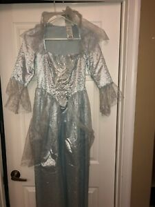 Disney Fairy Godmother Dress