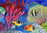 Colorful Ocean Fish & Coral ~ Marine Life ~ DIY Counted Cross Stitch Pattern