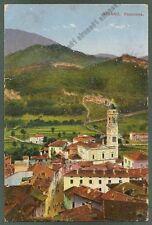 VARESE BESANO 02 Cartolina viaggiata 1927