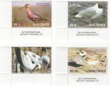 Maldives - Birds Stamp - 4v MNH