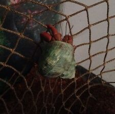 New listing Hermit Crab Climbing Net (natural)