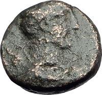 Amphipolis in Macedonia 148BC Authentic Ancient Greek Coin ARTEMIS BULL i63845