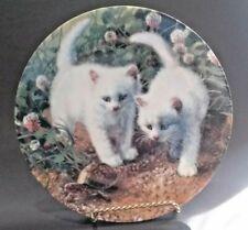 1987 Knowles Plate Cat Tales Amy Brackenbury White American Shorthairs & Turtle