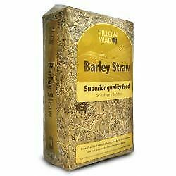 Pillow Wad Barley Straw - 2kg - 560599