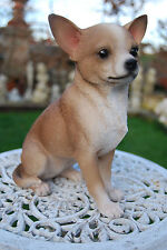 CHIEN CHIHUAHUA ou CHIWAWA  DE COLLECTION EN POLYRESINE