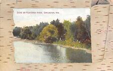 Darlington Wisconsin~Pecatonica River~Birch Bark Peelback Border~1909 Postcard