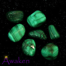 *ONE* MALACHITE Natural Tumbled Stone Approx 15-20mm *TRUSTED SELLER*
