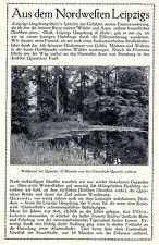 Aus dem Nordwesten Leipzigs Villenkolonie Gartenstadt Text / Bilddokument 1908