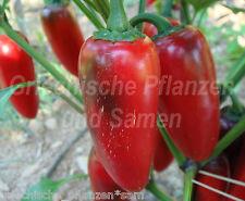 🔥 🌶 tam Jalapeno Chili dulce para niños * para balcón * 10 semillas