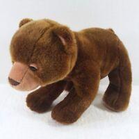 "ERIC CARLE 2008 Bear Kohls Cares for Kids Brown 13 - 14"""