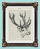 "Stag head deer Antique vintage encyclopaedia dictionary art print 10"" x 8"""