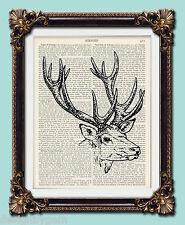"Stag head deer Antique vintage encyclopaedia dictionary art print 10"" x 8"""