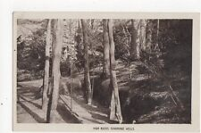 High Rocks Tunbridge Wells Vintage RP Postcard 277a
