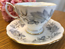 Royal Albert Silver Maple Bone China Tea Cup And Saucer