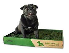 GreenInBox 60x40 - Lettiera in vera erba per cani - erba in zolla per pet
