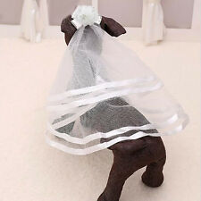 Puppy Cat Pets Accessory Grooming Classic Wedding Veil Bridal Costume Boutique