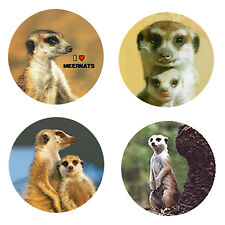 Meerkat Magnets-C-A great gift or add it to your Collection.