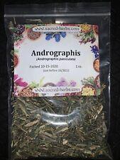 Andrographis Herb (Andrographis paniculata) - 1 oz Dried